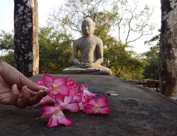 Op ontdekkingstocht door Sri Lanka's geschiedenis, de culturele driehoek
