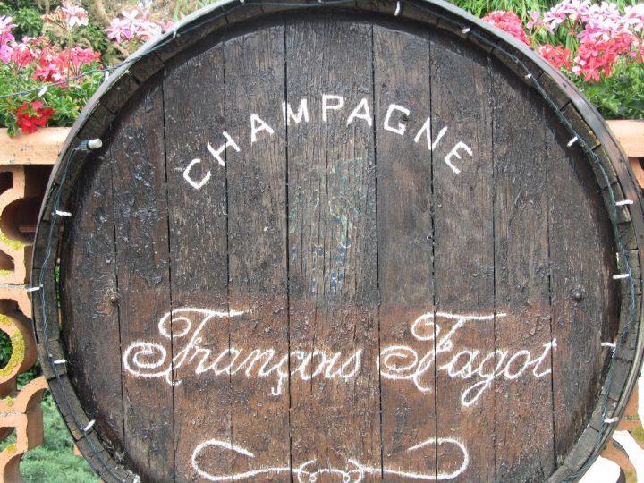 Deel 13 | Wandelen door de Champagne streek